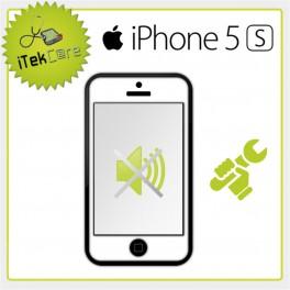 Réparation du bloc buzzer pour iPhone 5S